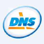 DNL logo nowbest.ru